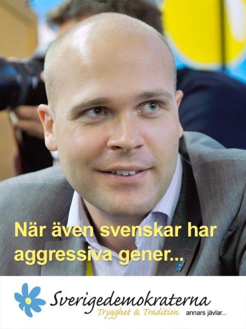 sd_erik_almqvist_aggressiv.jpg