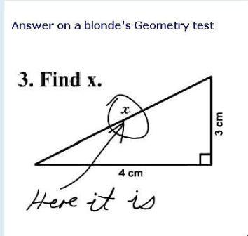 913-dumb-blonde.jpg