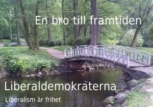LibDem bridge.jpg